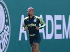 Felipe Melo está em recuperação de lesão no Palmeiras