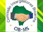 A primeira reunião ordinária de 2021 da Comissão Intergestores Bipartite da assistência social (CIB/MS) acontece nesta quinta-feira (25)