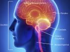 A doença geralmente surge sob a forma de surtos recorrentes, sintomas neurológicos que duram ao menos um dia
