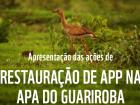 O Programa Manancial Vivo (PMV) foi criado pela Prefeitura de Campo Grande, por meio da Resolução Semadur em Novembro de 2010