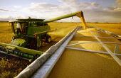 Clima prejudica e produção de soja em MS encerra ciclo com redução próxima a 9%
