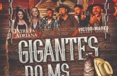 'Gigantes do MS' reunirá o melhor do sertanejo de MS em dezembro