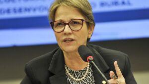 Tereza Cristina disse que Brasil continua a abrir outros mercados