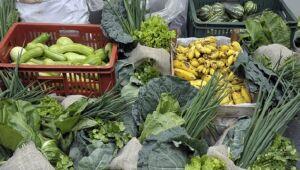Agricultura familiar será beneficiada com a adesão do Estado ao compra com doação simultânea