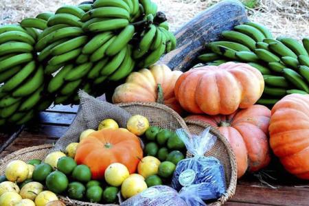 A qualidade dos produtos dessas feiras conta com o apoio da equipe de agroecologia da Agência de Desenvolvimento Agrário e Extensão Rural (Agraer)