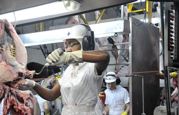 Celulose e carnes alavancam exportação da indústria de MS em 2019