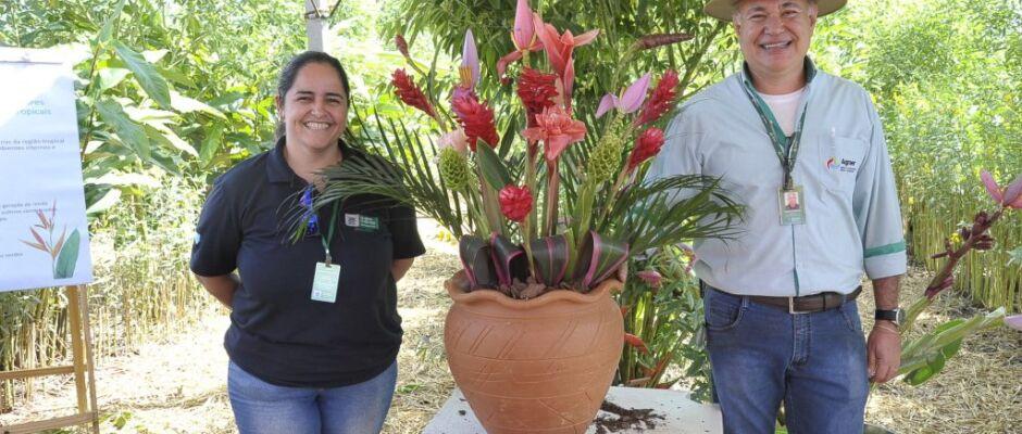 Flores e cultivo protegido de plantas são apresentados em feira do segmento em Dourados
