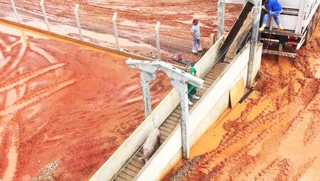 Com esse desempenho, Mato Grosso do Sul foi o 6º maior exportador de carnes de suínos em 2020