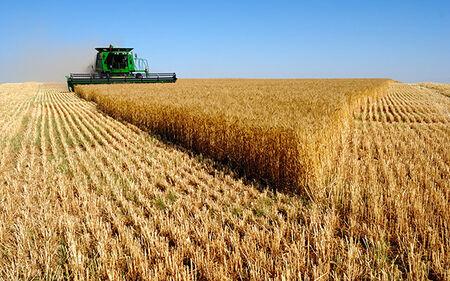 Ao todo, 12 municípios de Mato Grosso do Sul estão na lista dos 100 maiores produtores do agronegócio brasileiro