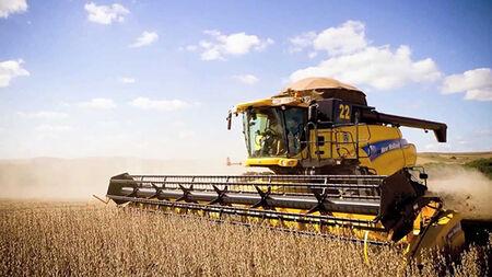 Os produtores brasileiros devem semear 62,2 milhões de hectares na safra agrícola de 2019, uma elevação de 2,1% em relação à área colhida em 2018