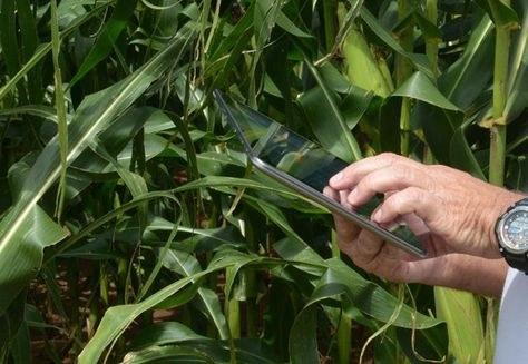 A expectativa dos pesquisadores é que a ferramenta contribua para a definição de estratégias para a chamada agrometeorologia de precisão – que analisa a variabilidade da produção a partir de fatores como fertilidade do solo e recursos hídricos