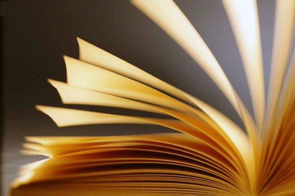 Clube da leitura foi criado em 2015