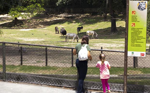 Vazio, o Zoo cancelou a programação organizada para o aniversário de 60 anos