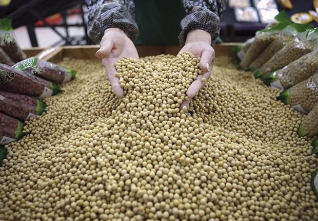 Não é por acaso que o estudo da FGV sobre o mercado de trabalho no campo aponta que a soja foi a atividade do agronegócio que melhor remunerou os trabalhadores