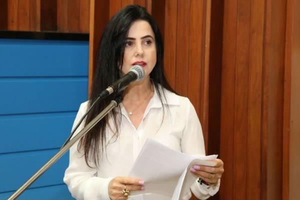 A audiência pública será comandada pela deputada Mara Caseiro (PSDB)
