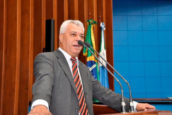 Parlamentar pediu esforços para combater crimes em MS