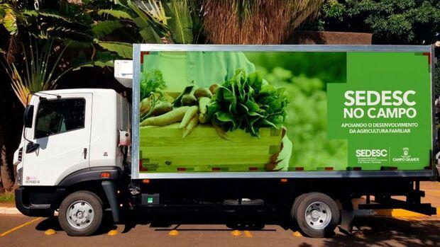 O Projeto Saladão busca propiciar fomento à horticultura e fortalecimento da agricultura familiar de Campo Grande, bem como levar qualidade de vida e saúde às pessoas através de alimentos saudáveis