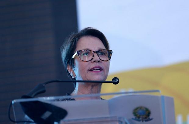 Engenheira agrônoma e empresária, Tereza Cristina é presidente da FPA e tem uma longa trajetória no setor
