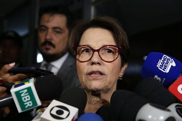 """A futura ministra avaliou que toda vez que o Brasil recebe """"um chamamento"""" para produzir, o setor produtivo responde de forma """"firme e assertiva""""."""