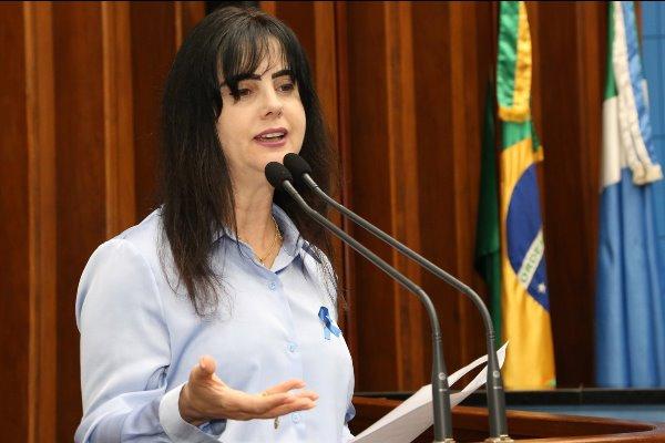 Mara critica delegação da OEA por não ouvir setor produtivo