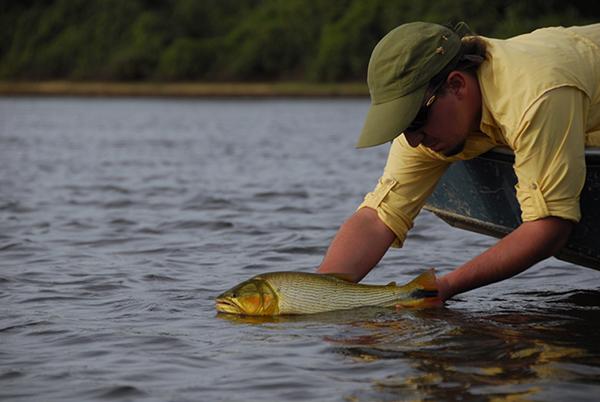 A proibição deve atingir cerca de 80 mil pescadores do Estado de São Paulo, que se deslocam anualmente aos rios do Pantanal