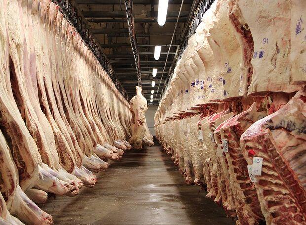 Atualmente o Precoce/MS conta com três empresas de Classificação e Tipificação de Carcaças Bovinas para atendimento de 14 frigoríficos credenciados para o abate de bovinos dentro do Programa