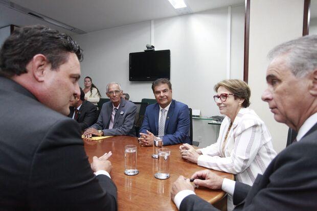 Para o senador Nelsinho Trad, a audiência foi positiva e destacou o consórcio de Mato Grosso do Sul que já seria modelo no País.