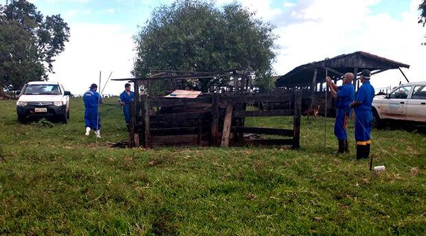 Com a confirmação dos casos, a Iagro deu início ao trabalho para alertar os produtores rurais de toda região para a necessidade de vacinação em todos os herbívoros, para evitar assim a proliferação da doença