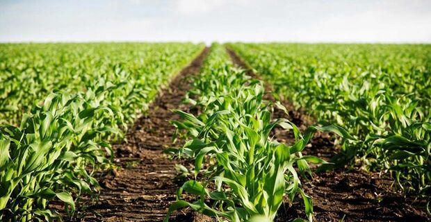 O Circuito BTG consiste na realização de palestras referentes a dois temas focados no agronegócio: Planejamento e Proteção Patrimonial e Novas Fontes de Captação para o Agronegócio.