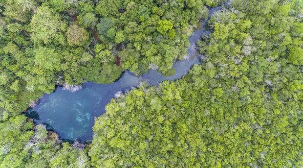 Rio da Prata: ações para recuperação e conservação.