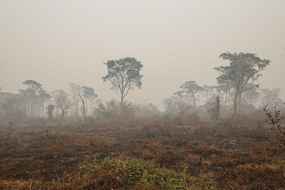 Queimadas no Pantanal se prolongam há meses