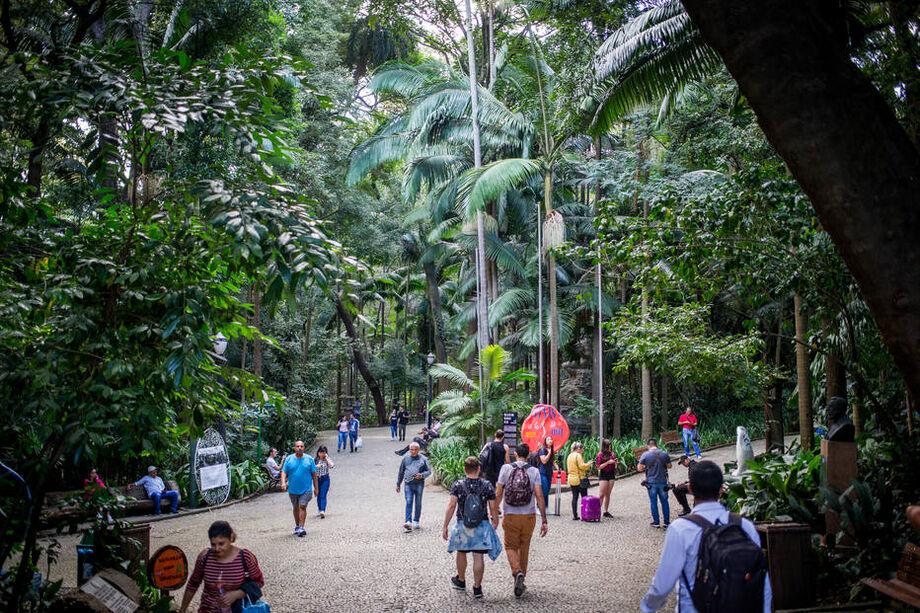 Visitantes caminham sob a vegetação do Parque Trianon, em São Paulo