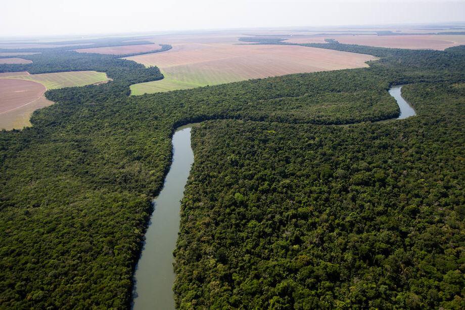 As áreas ofertadas não estão em unidades de conservação de proteção integral, reservas extrativistas ou terras indígenas