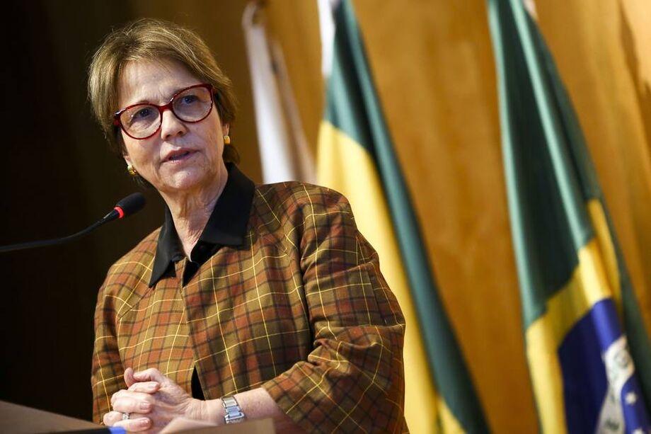 A ministra pontuou ainda que é necessário punir quem ateou fogo no bioma