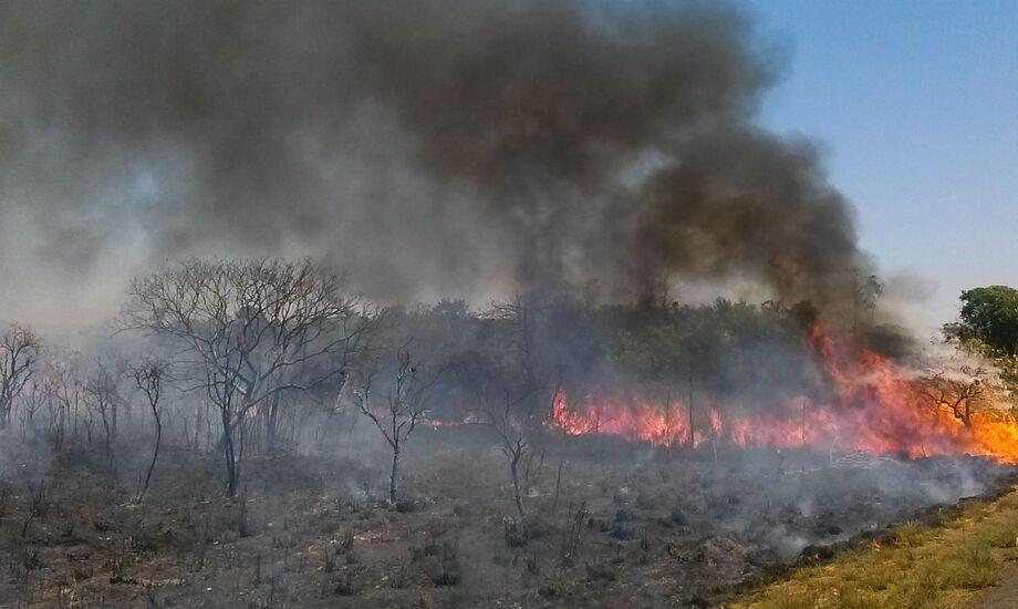 Ao todo, 75 pessoas estão participando da ação de combate ao fogo, que conta com o apoio de um helicóptero do Corpo de Bombeiros