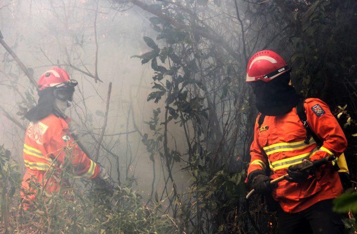 Bombeiros combatem o incêndio