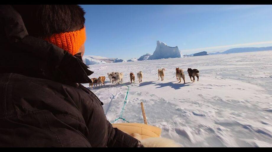 Cena do documentário 'The Last Ice', de Scott Ressler