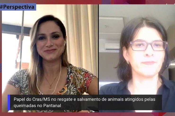 Aline Bitencourt de Oliveira Duarte, coordenadora do Centro de Reabilitação de Animais Silvestres, é a entrevistada desta edição