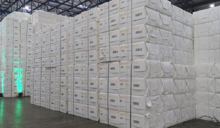 Atualmente, dois novos projetos de produção de celulose já foram licenciados e autorizados em Mato Grosso do Sul.