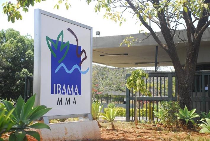 Ibama encara uma queda de braços com o Ministério da Economia e alega que a pasta tem segurado a execução financeira do orçamento do instituto.