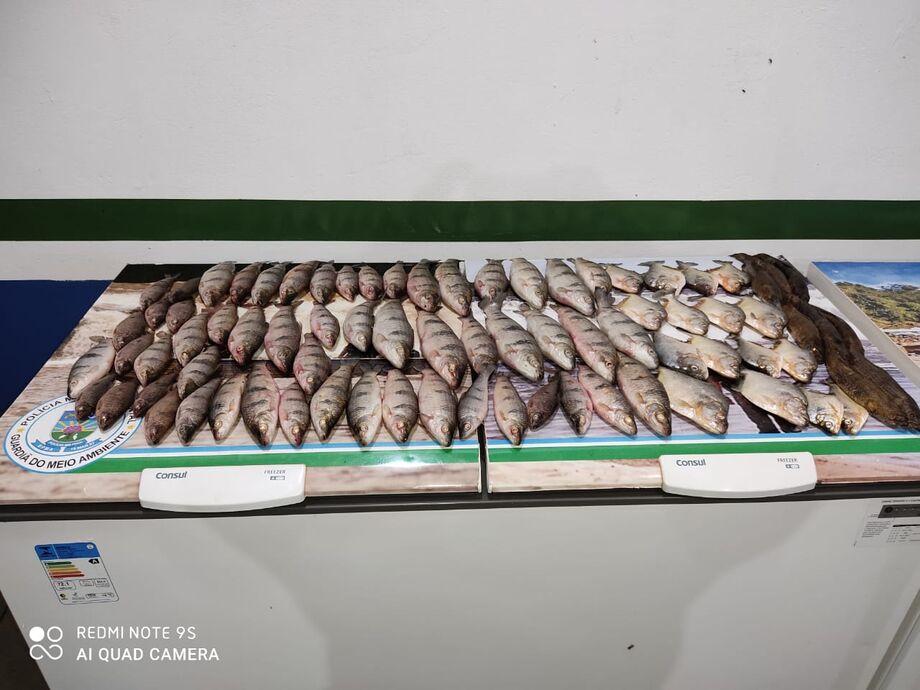 Ele foi abordado em um veículo Chevrolet Meriva e transportava 79 exemplares de pescado, sendo 55 peixes da espécie piau, oito da espécie traíra e 16 da espécie piranha