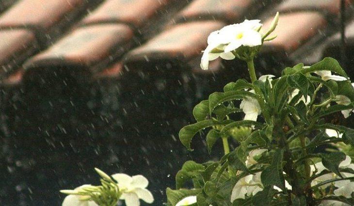Chuva em MS