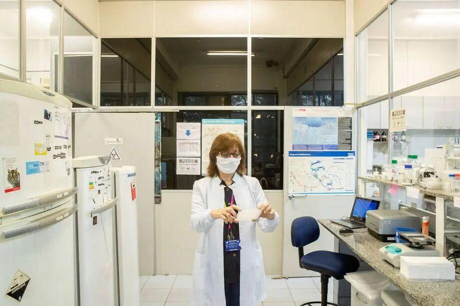 A pesquisadora Dra. Maria Rita Passos-Bueno, 61 anos, no Centro de Pesquisa do Genoma Humano, com cartela de resultados de teste de saliva para o novo coronavírus