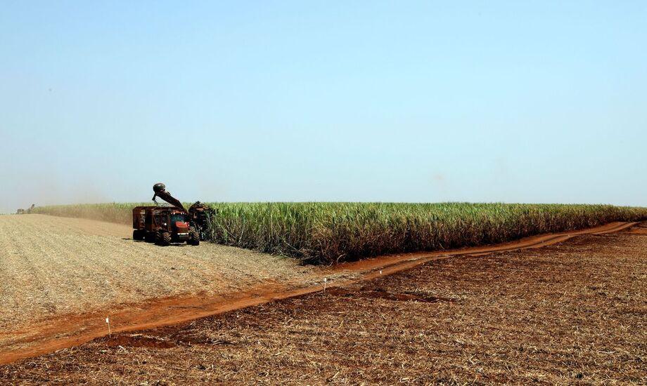 Agricultura lança plataforma para registro de máquinas e tratores