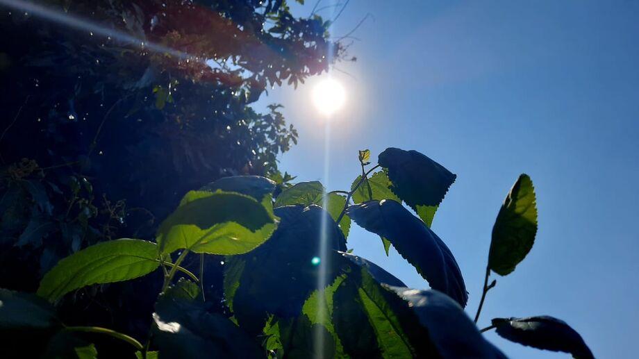 Com temperatura acima dos 30° C e sensação térmica na casa dos 40° C, o sábado (28) foi de muito calor em Mato Grosso do Sul