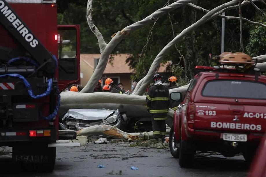 Bombeiros fazem resgate de vítimas de carro que foi atingido por uma árvore