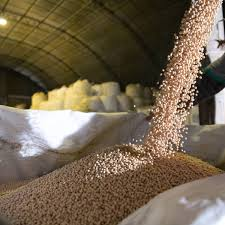 O Brasil é o maior produtor mundial de soja