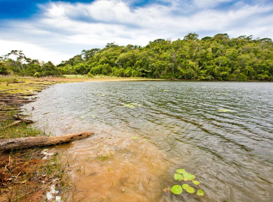 Parque Estadual Rio Doce, MG - Leilões para concessão de parques estaduais devem iniciar este ano