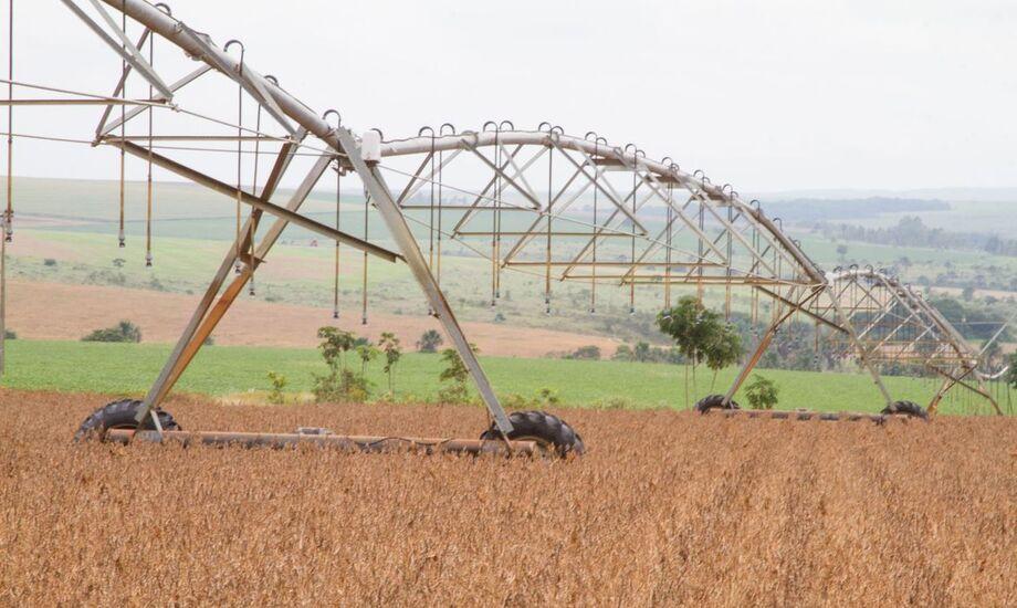 O Ministério da Agricultura divulgou uma nota para reafirmar que a produção de soja no país é sustentável e que a cultura do grão não exporta desmatamento