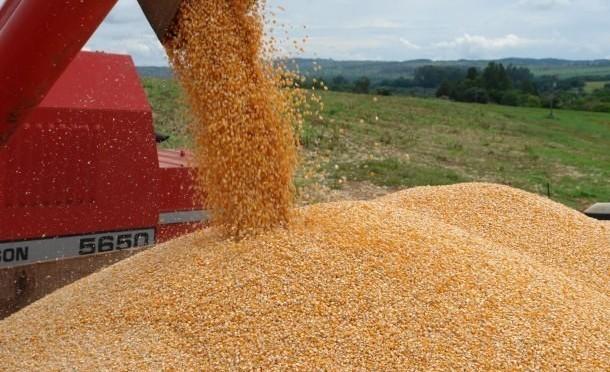 Exportações de milho cresceram 86%